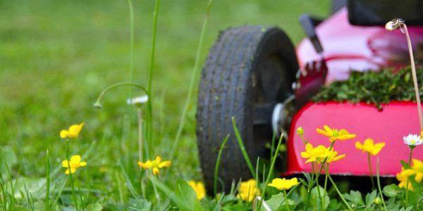 Quel groupe électrogène pour alimenter un aspirateur robot dans le jardin ?
